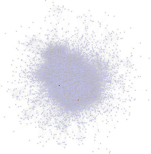 viral network - social network