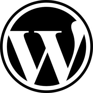 Quali sono i migliori temi WordPress