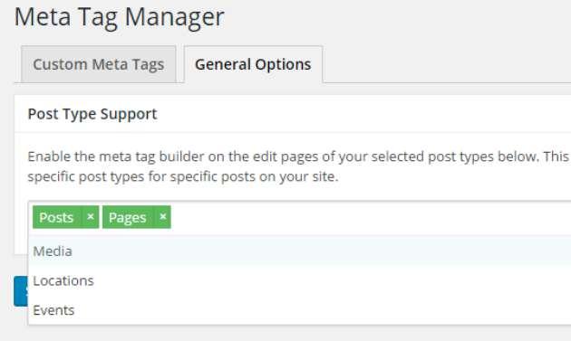 meta tag manager